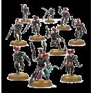 Warhammer 40000: Wyches